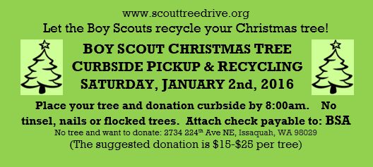 Boy Scout Tree Pickup Recycling